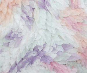 feather, pastel, and background image