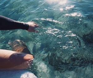 summer, ocean, and water image