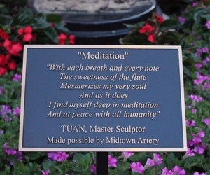 calm, flowers, and meditation image
