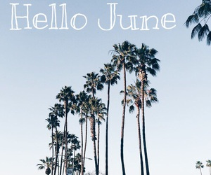 hello, june, and sommer image