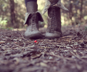 boots, forest, and lights image