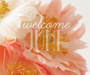june, welcome, and flowers image
