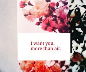 i want you more than air image