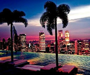 beautiful place, palms, and vacations image