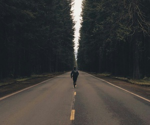 road, forest, and freedom image