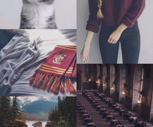 aesthetic, harry potter, and cute image