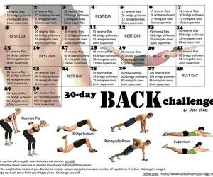 fitness, workout, and back image