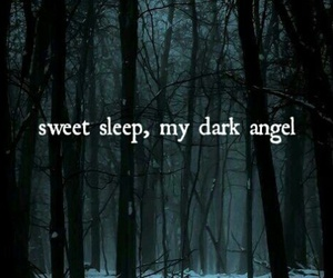 angel, dark, and evanescence image