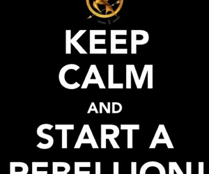 keep calm, rebellion, and the hunger games image