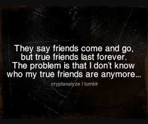 quotes, friends, and fake friends image