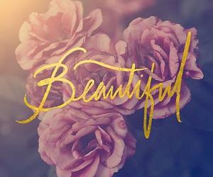 beautiful, flowers, and beauty image