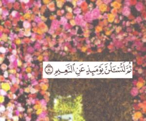 quran, islam, and ايات image