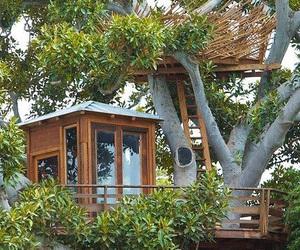 tree house, tree, and treehouse image