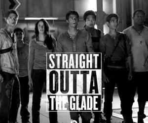 the scorch trials, the maze runner, and maze runner image