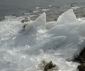 ice, pale, and nature image