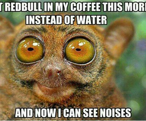 funny, coffee, and redbull image