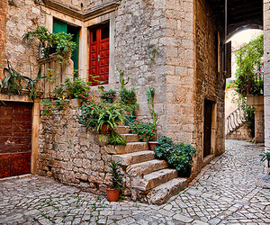 beautiful, stone steps, and plants image