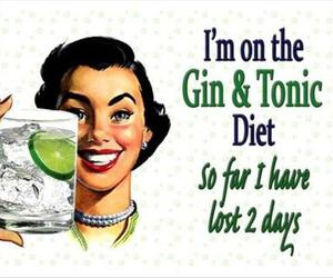 funny, diet, and gin image