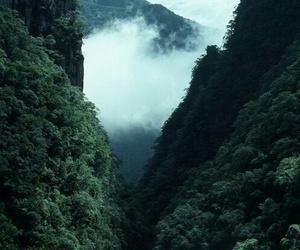 nature, grunge, and travel image