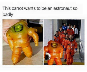 funny, astronaut, and carrot image