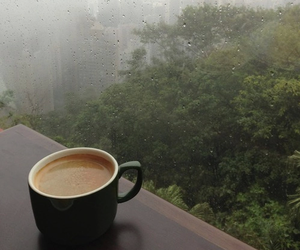rain, coffee, and nature image