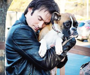 ian somerhalder, dog, and the vampire diaries image
