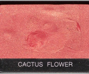 beauty, flower, and nars image