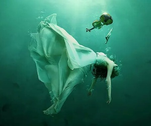 violin, water, and music image