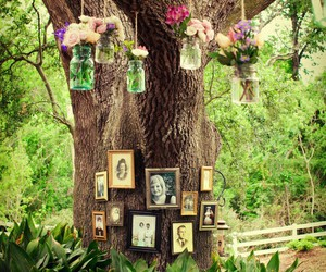amazing, family tree, and flowers image