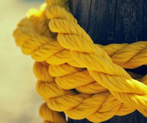 yellow and rope image