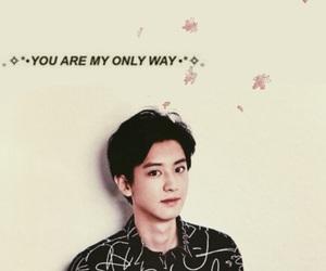 black&white, Chen, and exo image