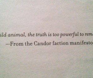 books, quotes, and truth image