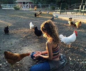 animal, freedom, and love image