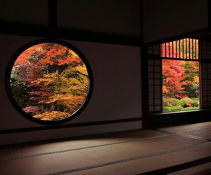 autumn, japan, and fall image