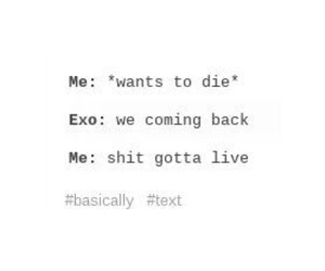 exo, fun, and funny image