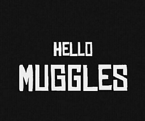 harry potter, muggles, and wallpaper image