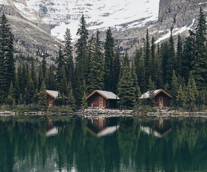 lake, forest, and mountain image