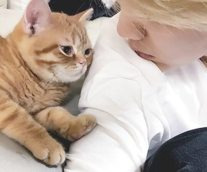 <3, blonde hair, and cat image