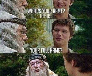 harry potter, funny, and the fault in our stars image