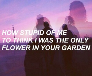 quotes, flowers, and grunge image