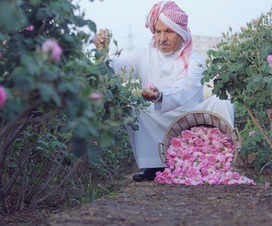 roses, arab, and pink image