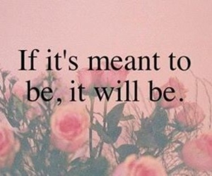 quote, flowers, and pink image