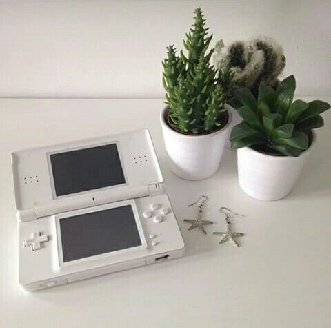 aesthetic, white, and green image
