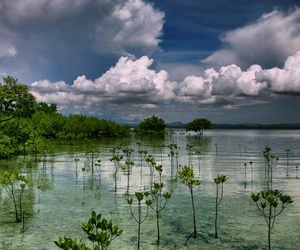 asia, nature, and travel image