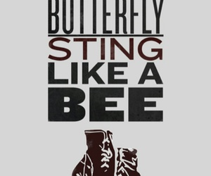 muhammad ali, boxing, and butterfly image