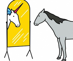 unicorn and horse image