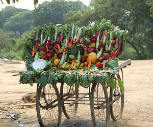 arrangement, india, and colorful vegetables image