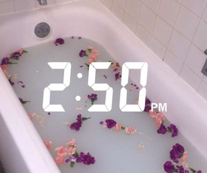 flowers, bath, and snapchat image