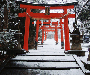 japan, winter, and snow image