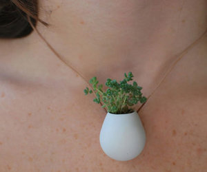necklace, plant, and nature image